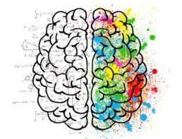 kolorowy mózg z równaniami matematycznymi